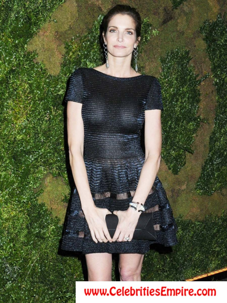 Stephanie seymour see through dress