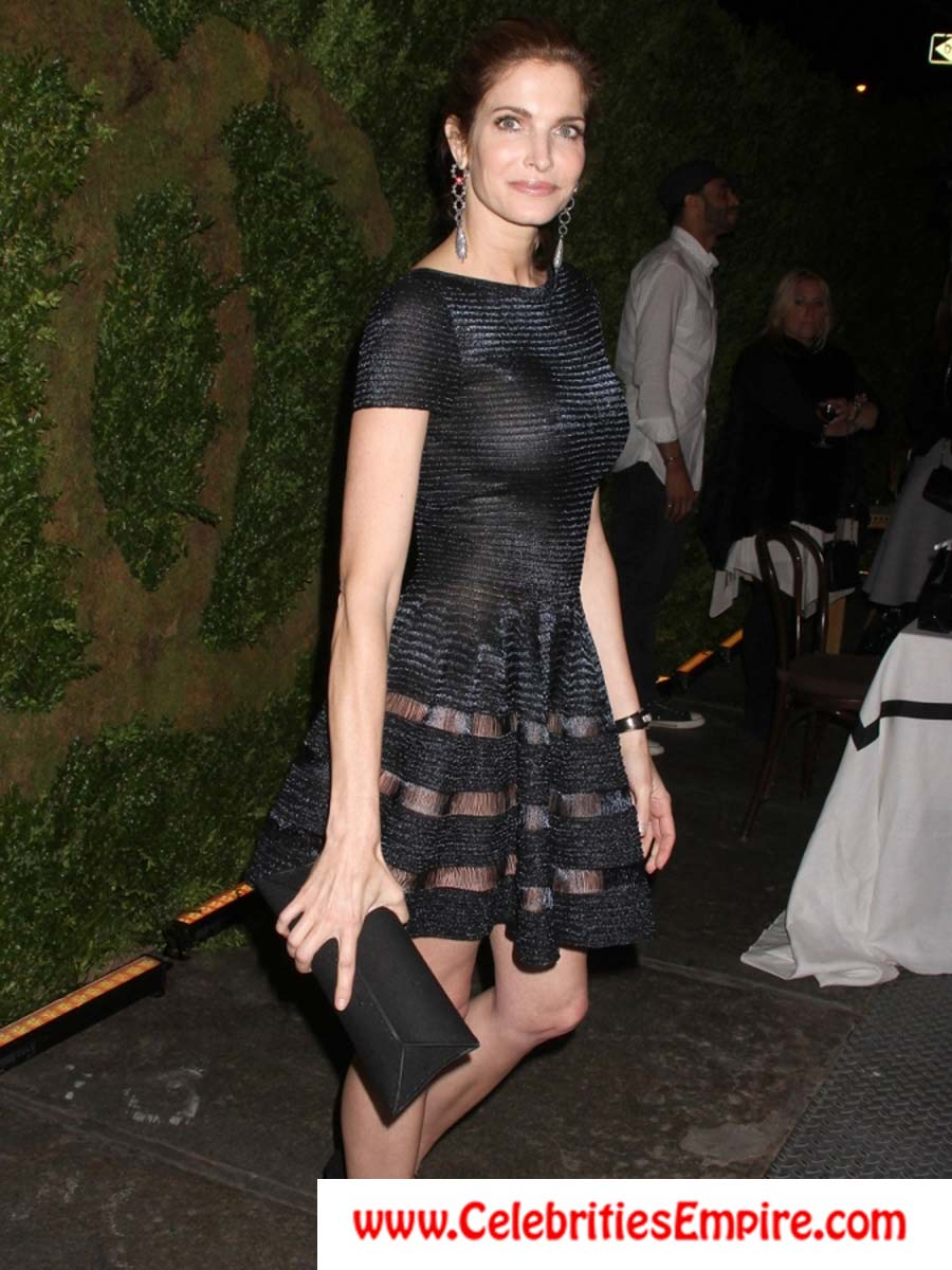 How that stephanie seymour see through dress